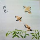 Xu Weien